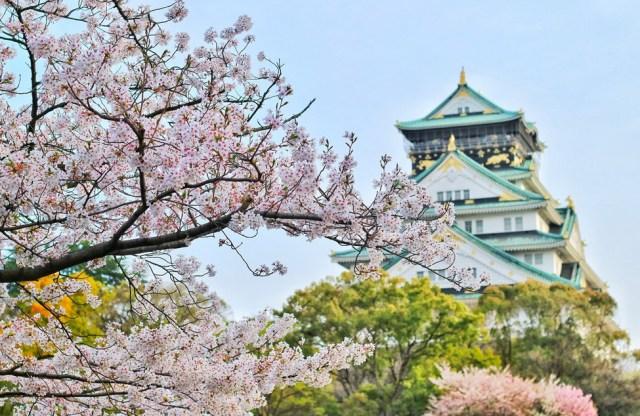 Tokyo-in-summer